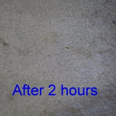 Same reviewer's carpet after two hours, showing that the stains have significantly lightened