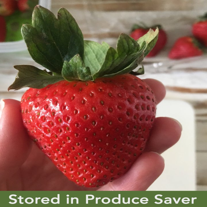 """A hand holding afresh-looking strawberry with text that reads """"Stored in Produce Saver"""""""