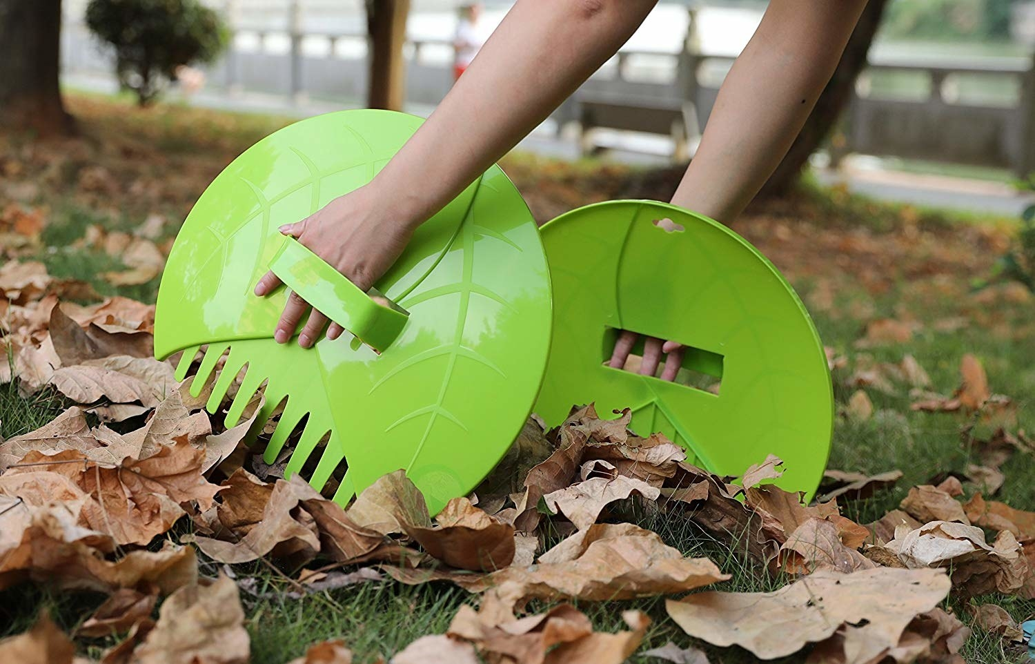Hands using the trashcan lid-like scoopers with rake teeth on the bottom to scoop leaves