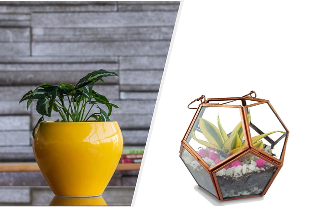 12 Cute Planters You Need To Live Your Best Plant Mom Life