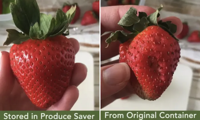 left side shows a pic of a fresh strawberry that was in the produce saver for one week. the right side shows a strawberry from the same bunch that was stored in another plastic bowl.