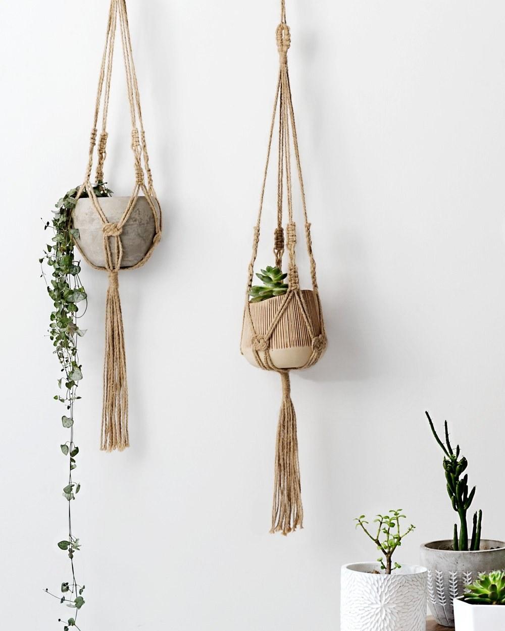 Boho macrame planters holding potted plants
