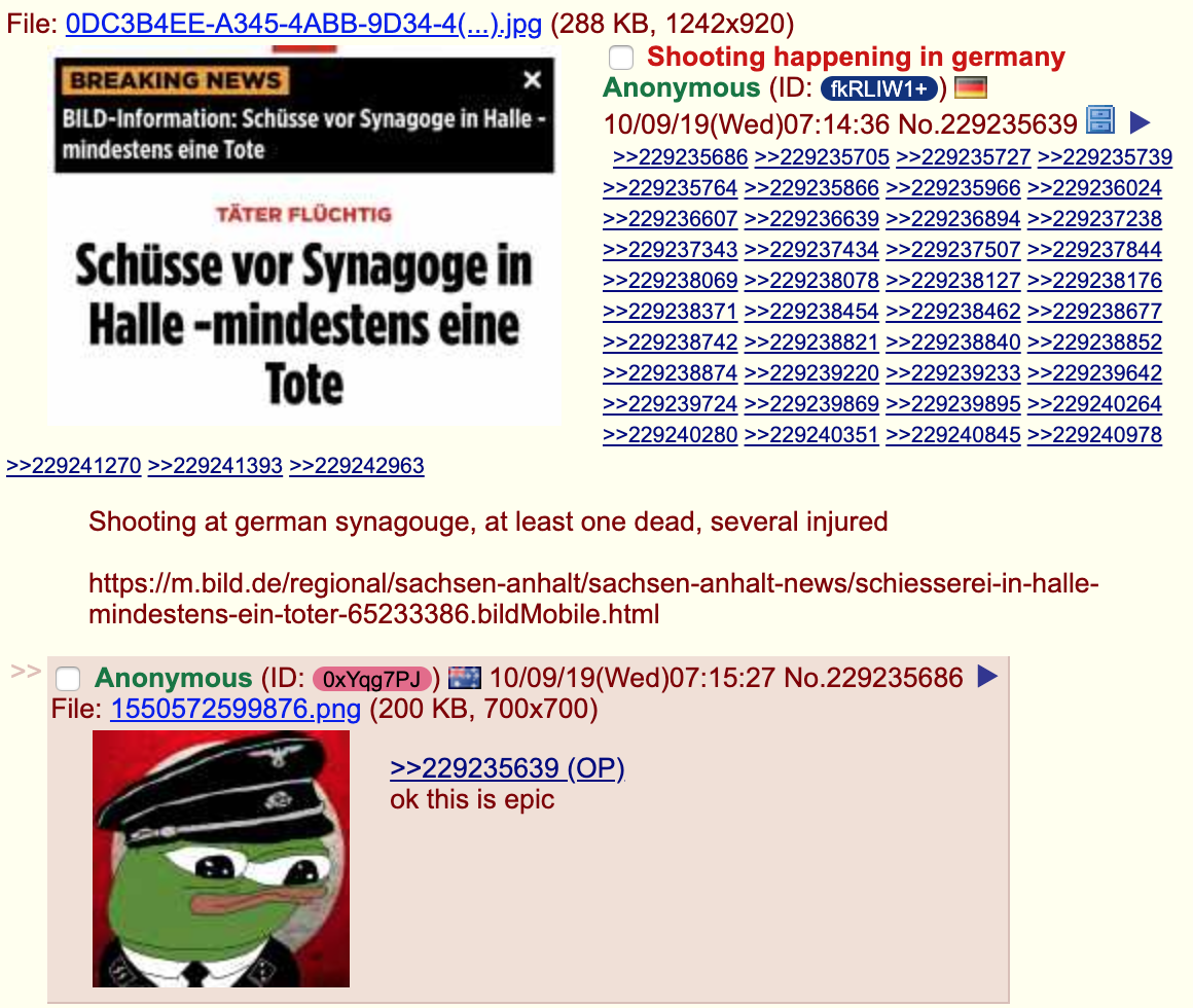 4Chan Torrent a gunman apparently motivatedanti-semitism livestreamed