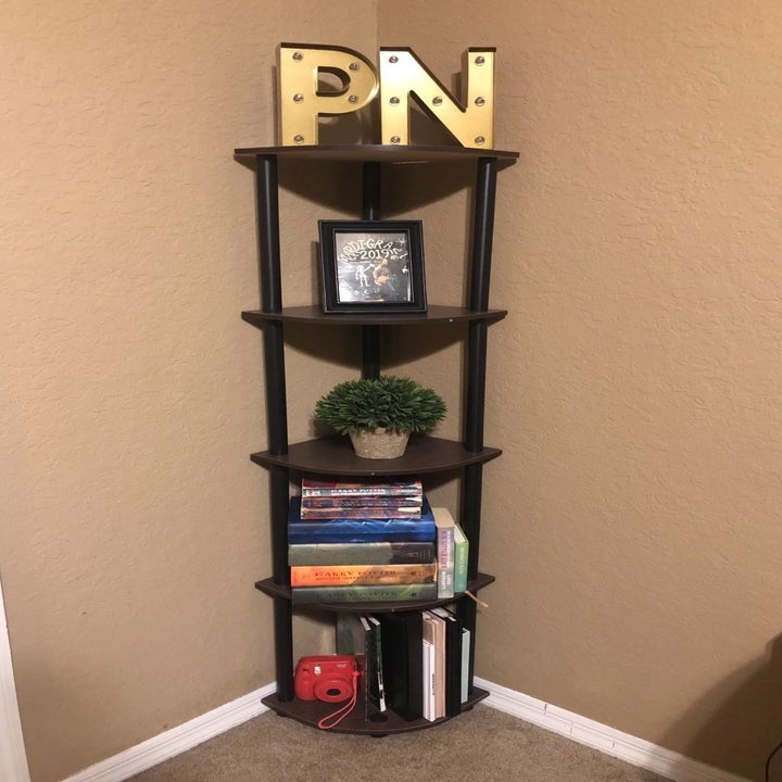 reviewer's shelf in a room, holding books, decor, and a plant