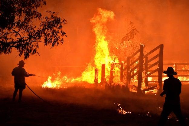 火事 山 オーストラリア の 《オーストラリア火事の場所・地図》範囲がシャレにならんレベルの火事でヤバい
