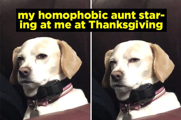 17 Thanksgiving Tweets From 2019 That've Gone Viral (So Far)