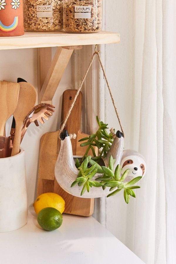 A planter that looks like a sloth with its feet in the air with a rope between them and a plant in the opening in the stomach