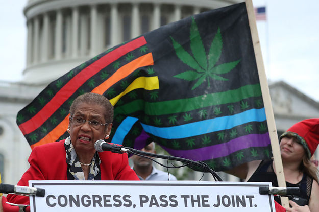 A Sweeping Cannabis Bill Just Passed A Key, Historic Vote In Congress