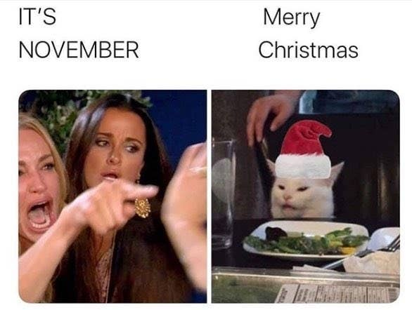 27 Woman Yelling At A Cat Memes That Have Kept Me Laughing So Hard