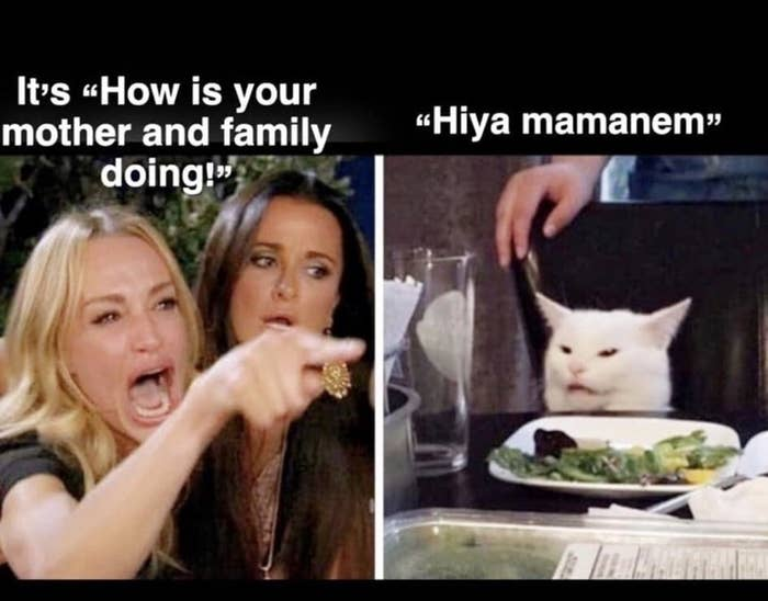 who is the lady in the cat memes