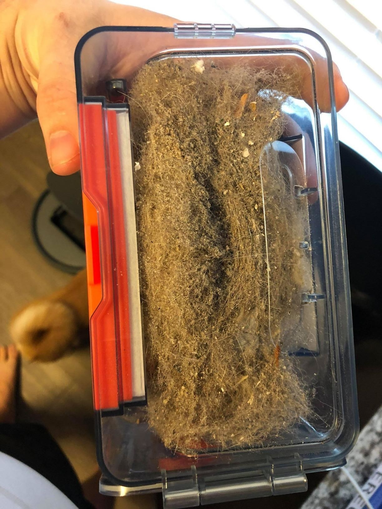 Reviewer showing how much dirt and fur the vacuum picked up