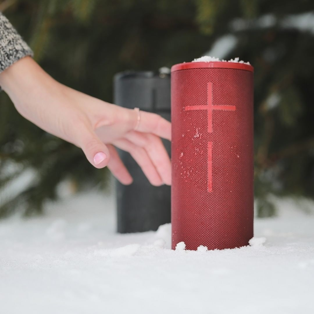 Two speakers in the snow