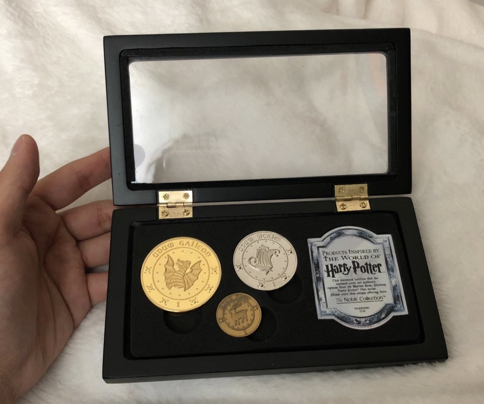 reviewer photo of the coin collection
