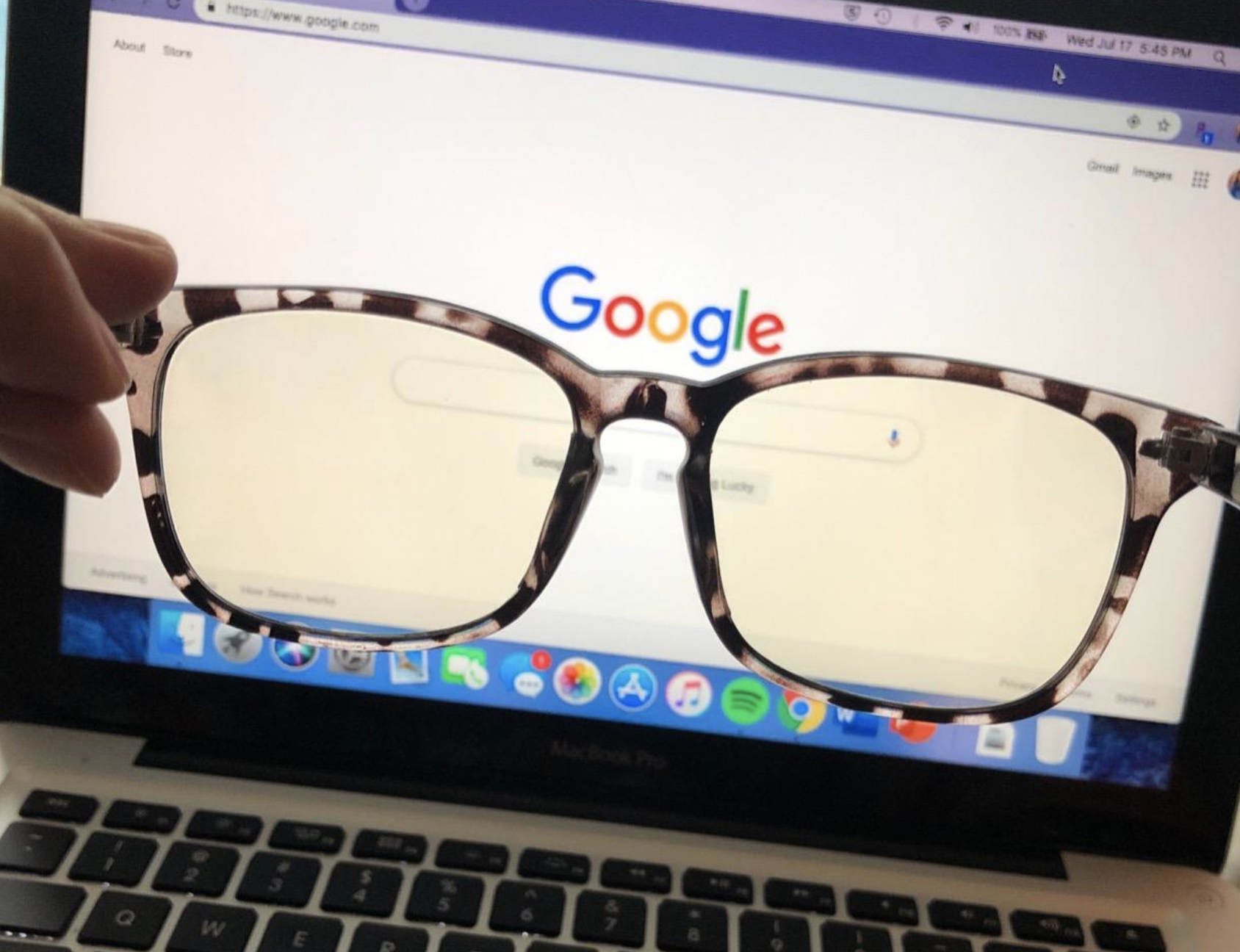 reviewer picture of tortoise frames