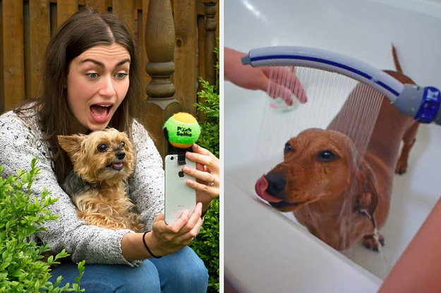 46 Things For Anyone Who's Obsessed With Their Pet
