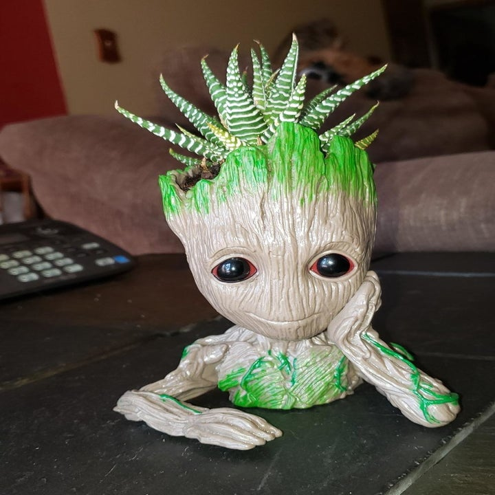 the groot planter with a succulent inside