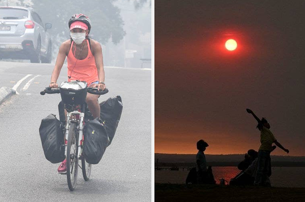 The Bushfire Smoke Haze Covering Sydney Is Setting Off Fire Alarms In Offices