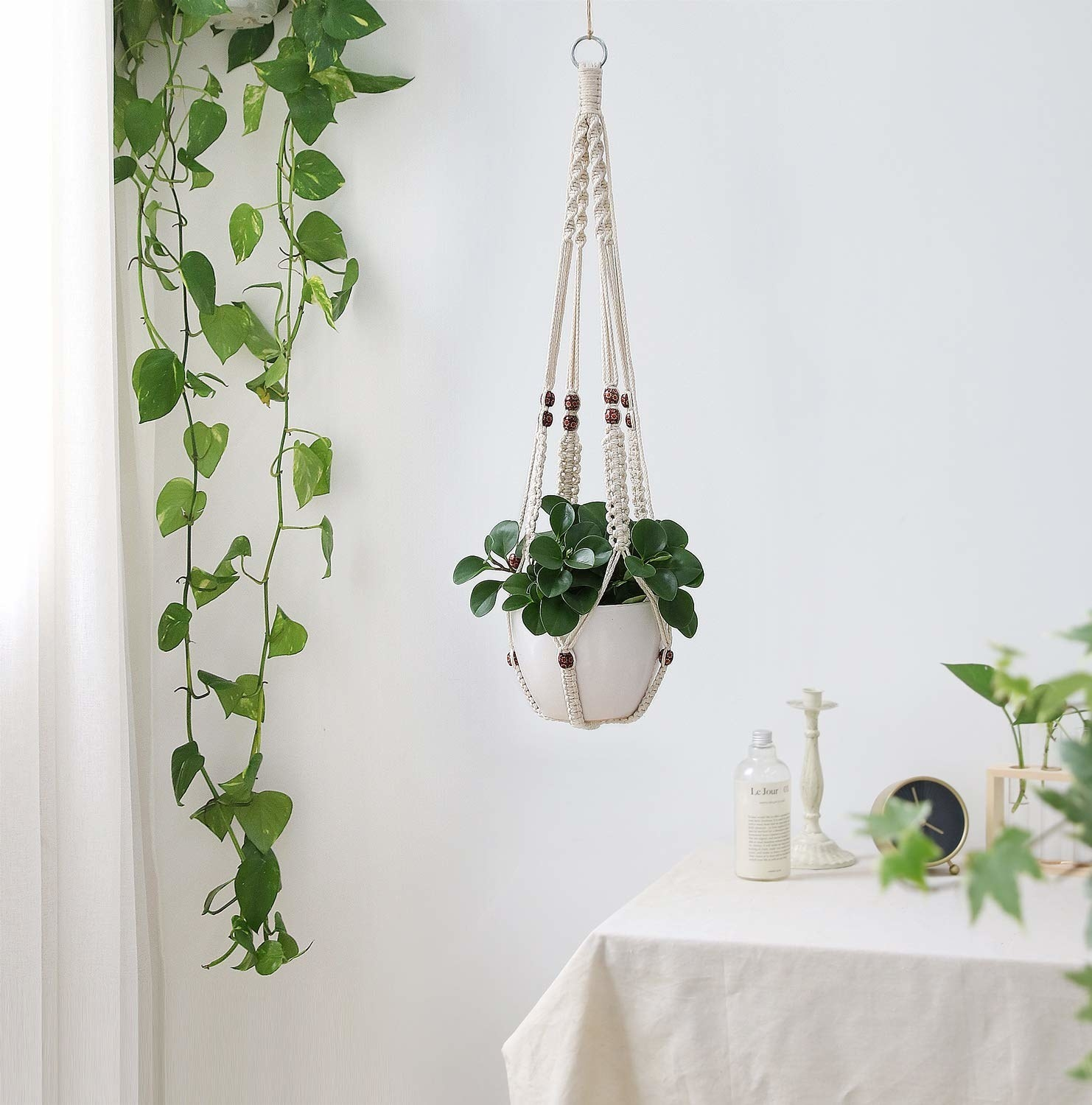 A plant hanging from the cream macrame strings with brown beads