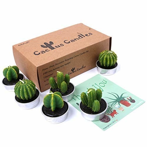 Six small tea light candles in the shape of succulents on a plain background