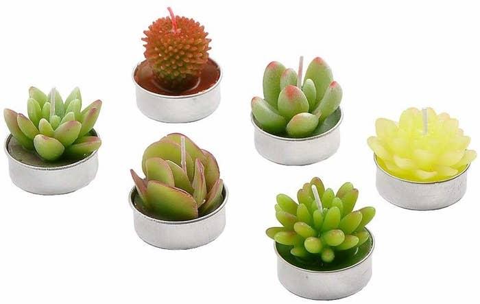 candle votives that look like succulent plants