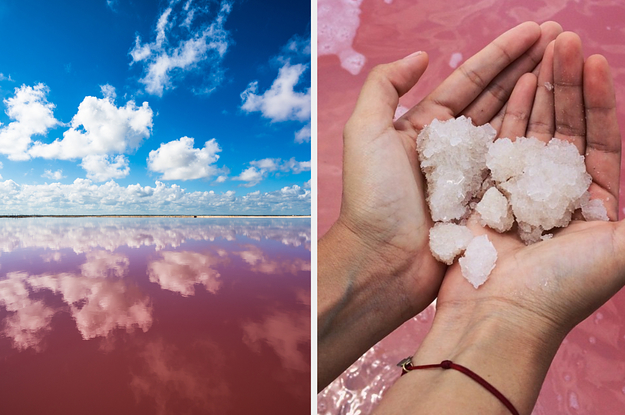 PSA: This Pink Lake Might Just Be The Most Beautiful Place In Mexico