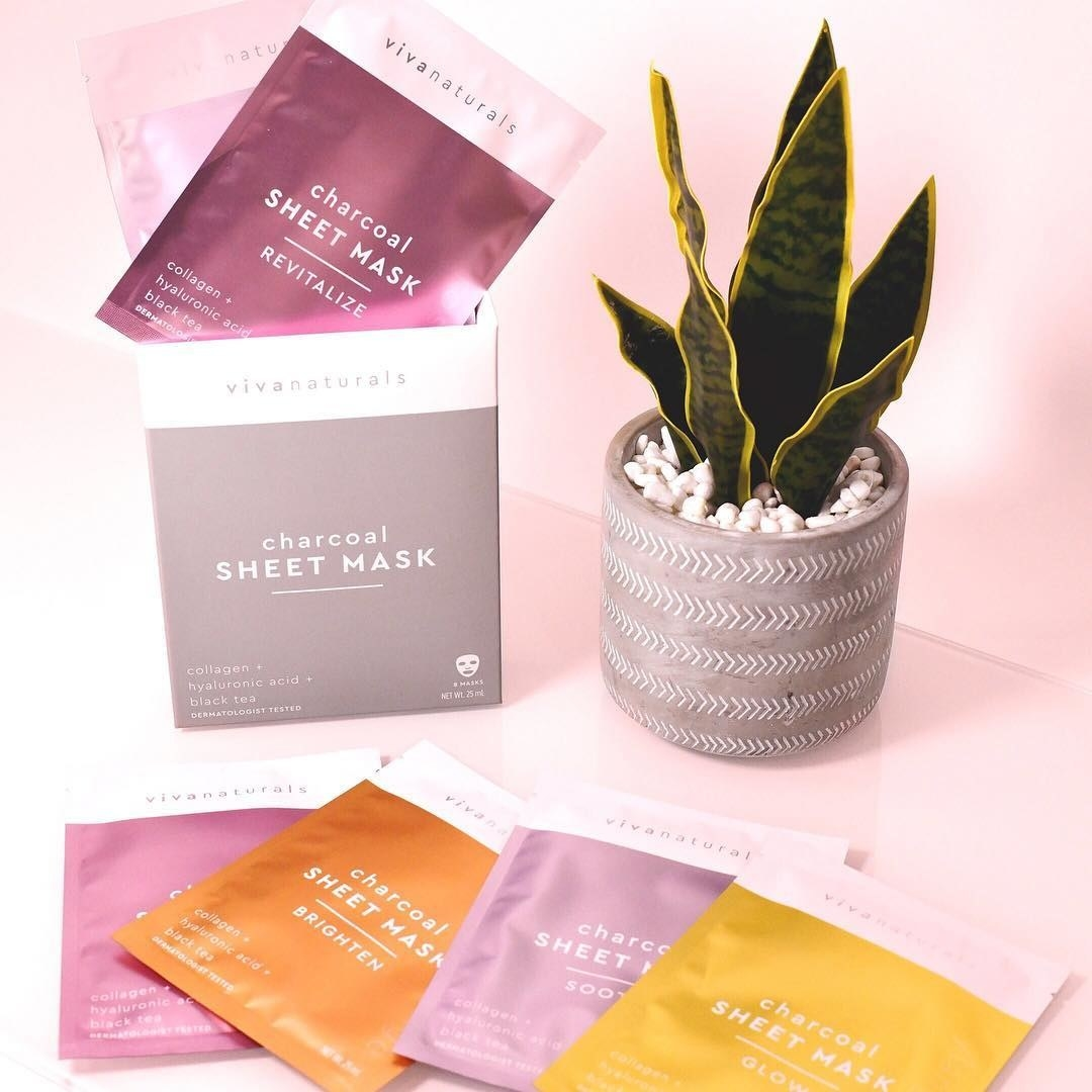 Six individual sheet masks arranged on a vanity next to a snake plant