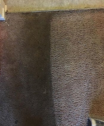 Reviewer's picture of their rug with one half treated, and one half still dirty. The treated half is significantly cleaner.