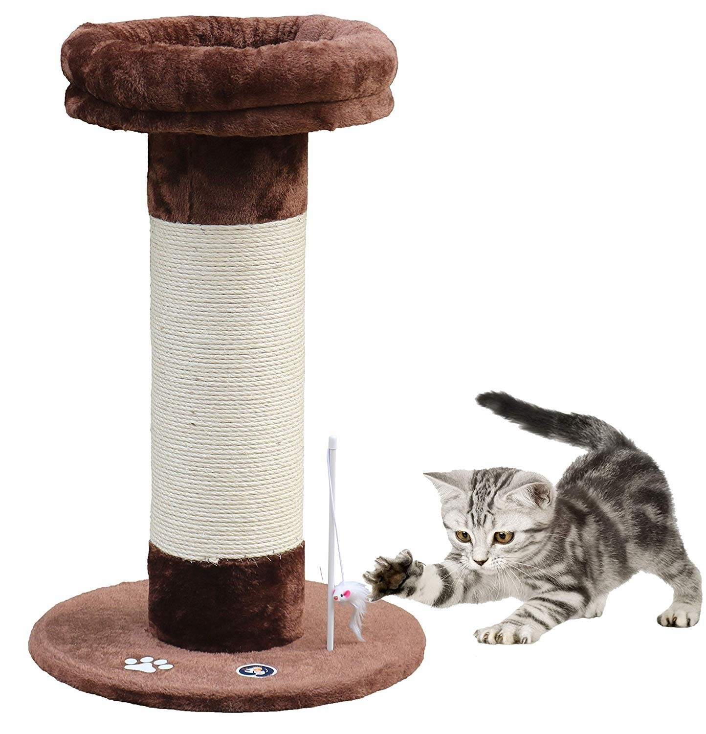 Cat playing with the toy attached to the scratching post.