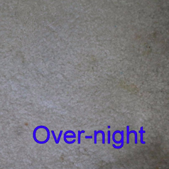 same reviewer's after pic of stainless carpet