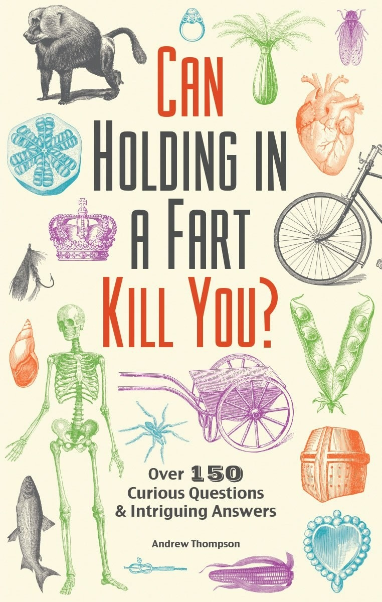 A copy of Can Holding In A Fart Kill You?