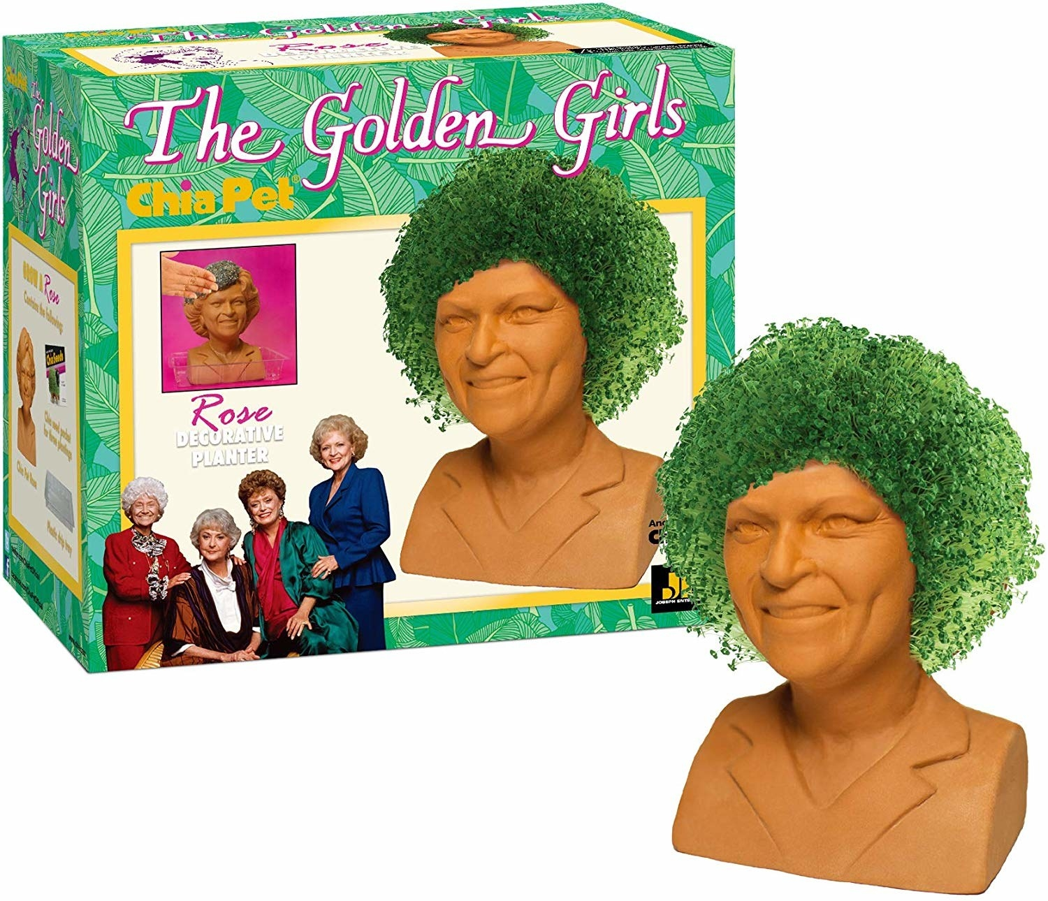 The clay rose Chia Pet, with a hair full of sprouted chia