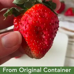 strawberry from original container looking moldy