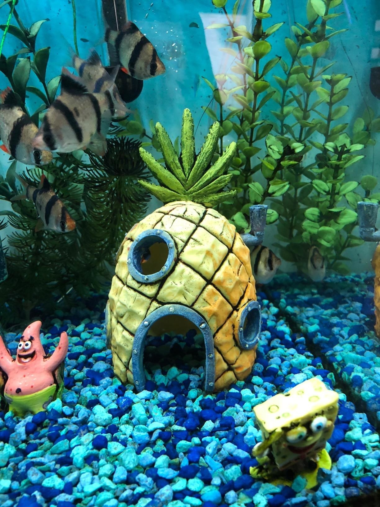 24 Spongebob Squarepants Gifts That Are Really Dolphin