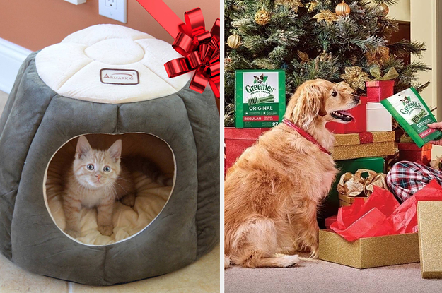 25 Of The Best Gifts For Pets ...