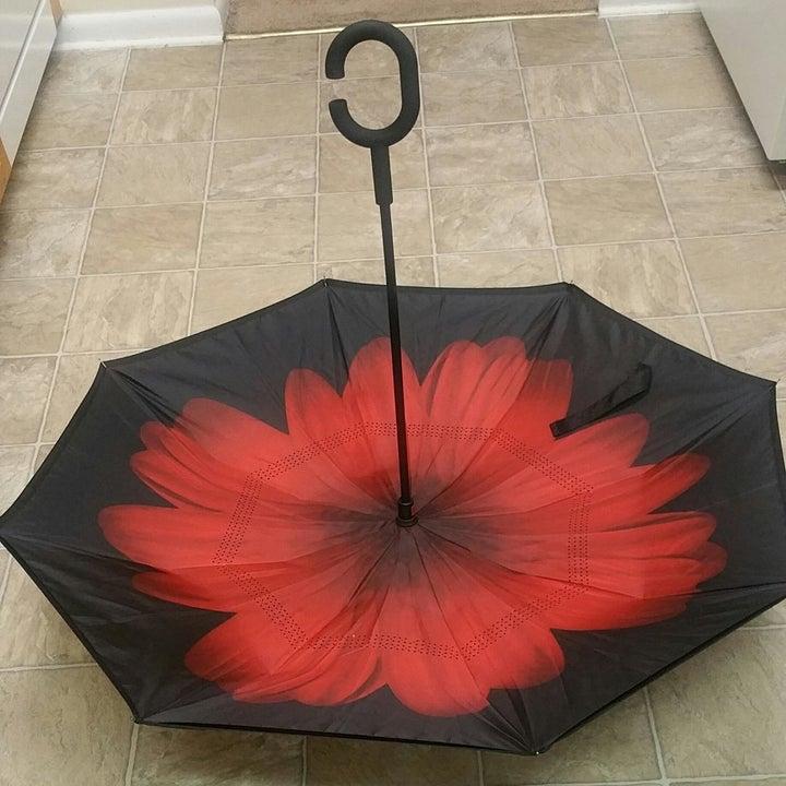 the same umbrella opened