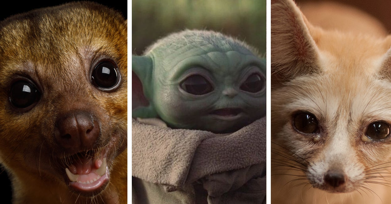 Baby Yoda's Voice Is Made Of A Bunch Of Cute Things And One Grown Man