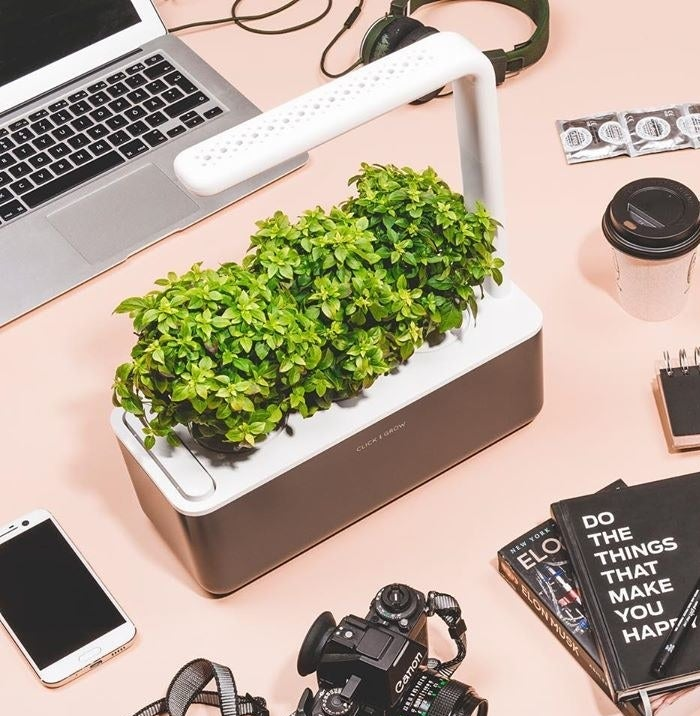 The Click and Grow surrounded by books and tech devices