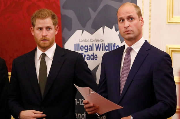 Prince Harry And Prince William Have ...