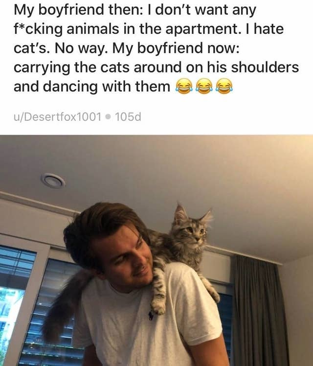Boyfriends And Husbands Who Fell In Love With The Cats They ...
