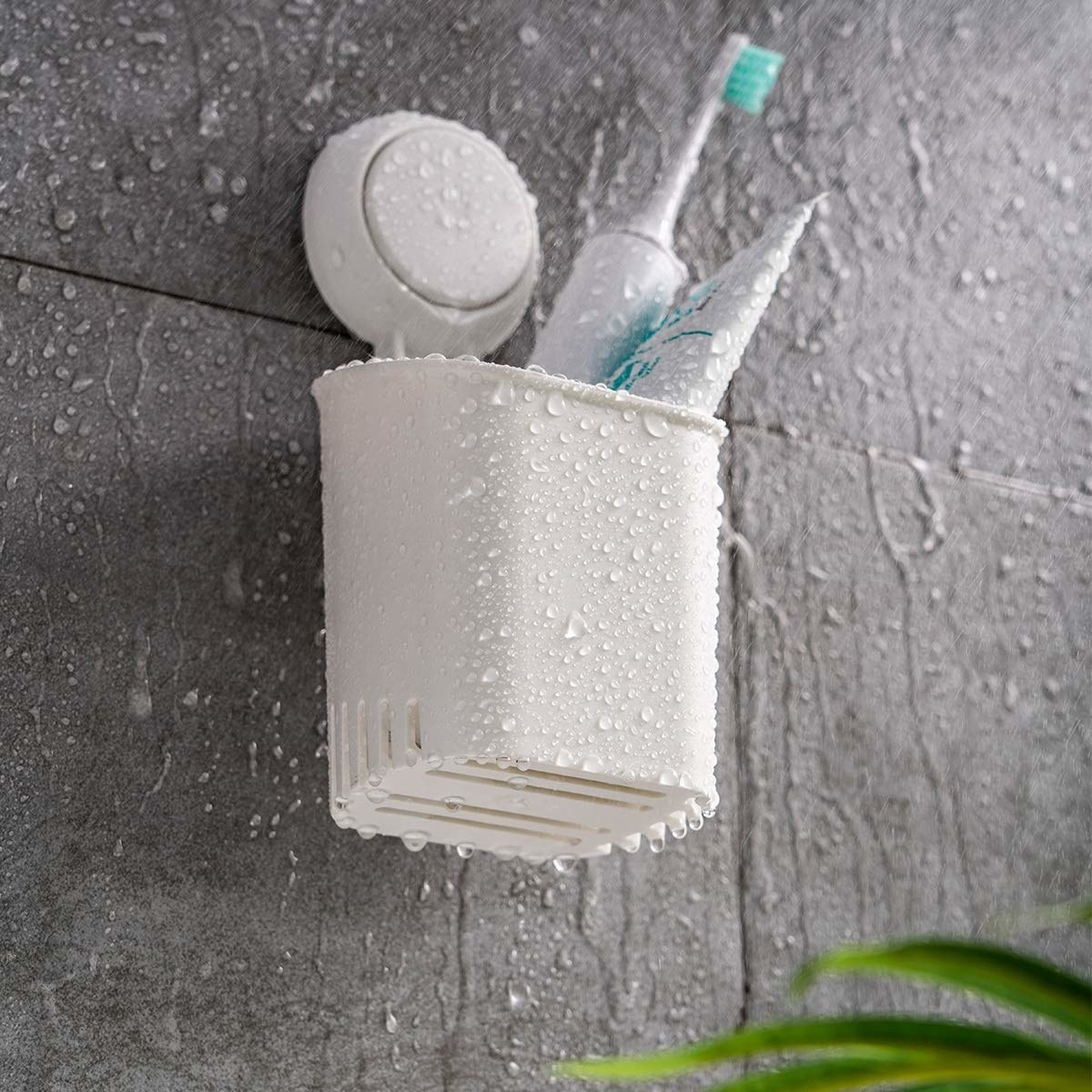 The caddy, wet from the shower, holding a toothbrush and toothpaste and suctioned to a wall in the shower