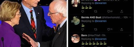 Bernie Sanders' Very Online Fans Are Filling Elizabeth Warren's Twitter Mentions With Snakes