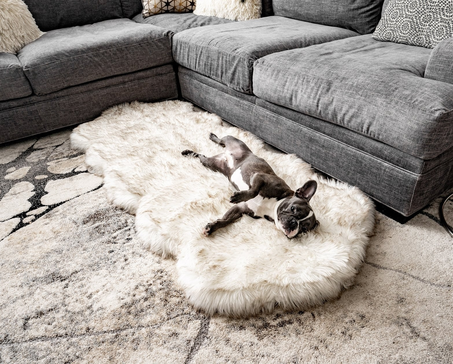 dog laying on faux sheepskin dog bed that looks like a nice rug