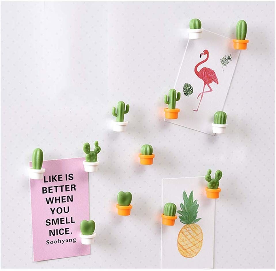 A set of ten miniature magnets in the shape of different succulents