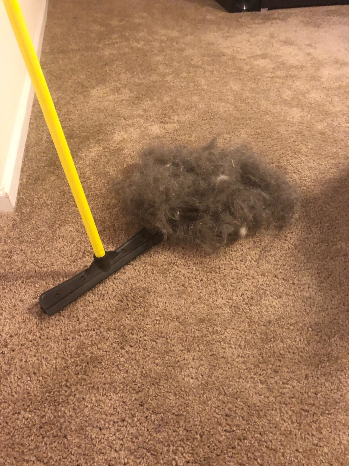 Reviewer's pile of hair and dust collected from carpet after using the broom device