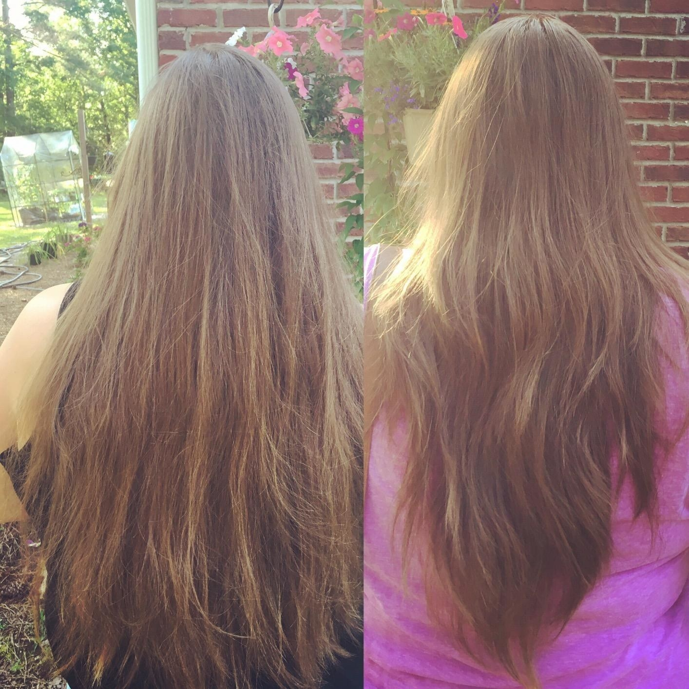 Before and after of reviewer who gave themselves long layers