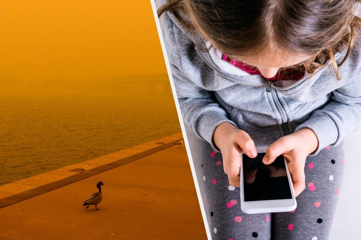 Australian Kids Have Been Stuck Indoors All Summer While Bushfires Burned
