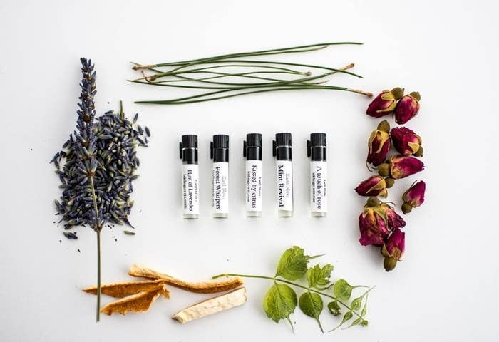 Five small vials surrounded by dried botanicals