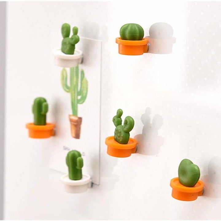 The magnets shaped like tiny cactuses in brown pots holding a card on a board