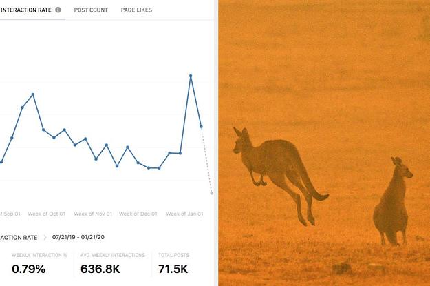 As Australia Burned, Climate Change Denialism Got A Boost On Facebook
