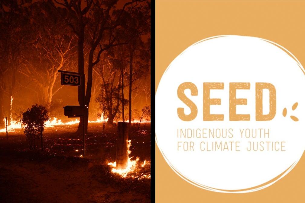 7 Ways You Can Help Bushfire-Affected Indigenous Communities